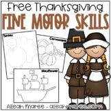 Thanksgiving Fine Motor Skills FREEBIE