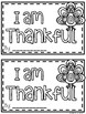 Thanksgiving Guided Reading Book