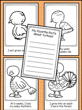 Thanksgiving 'I Am a Turkey' Life Cycle Emergent Readers - 3 Levels Included