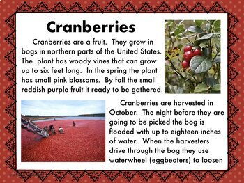 Informational Reading about Cranberries with Science Experiment