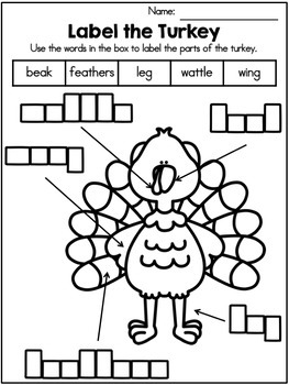 Thanksgiving Writing Activity - Label It Freebie
