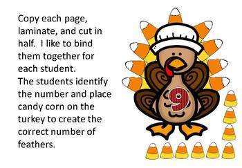 Thanksgiving Math 0-10