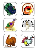 Thanksgiving Non-Identical Matching Task