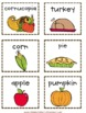 Thanksgiving Noun Sort Activity