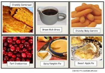 Thanksgiving Photo Food Flashcards