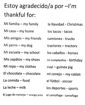 Thanksgiving Plan for Spanish Class