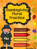 Thanksgiving Plural Practice