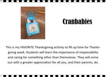 Thanksgiving Project - Cranbabies - Best Ever
