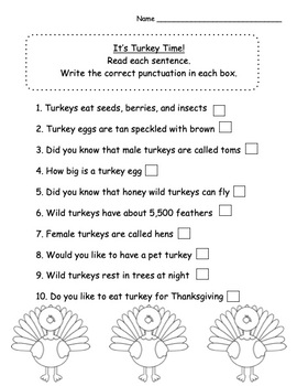 Thanksgiving Punctuation Practice