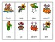 Thanksgiving Themed Sight Word Game (CCSS Aligned)