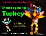 Thanksgiving Activity ::  Turkey Craft  ::  Turkey Life Cycle