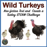Turkeys Informational Reading and Make a Turkey STEM Challenge