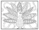 Thanksgiving Fall Visual Arts Coloring Pages Highly Detailed