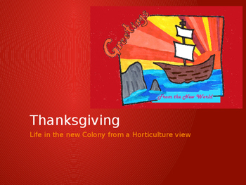 Thanksgiving: What did the Pilgrims grow and eat?