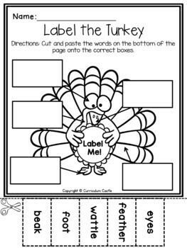 Thanksgiving Unit: Turkeys, Pilgrims and Native Americans!