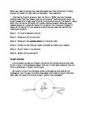 Thaumatrope Art Lesson