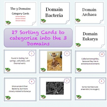 Domains Task Cards