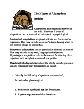 The 3 Types of Adaptations Activity