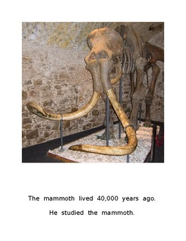 The 40,000 Year Old Baby
