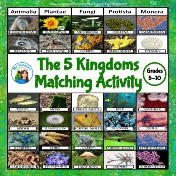 The 5 Kingdoms Matching Activity
