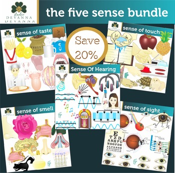 The 5 Senses Clip Art Bundle