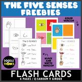 FREEBIE! The 5 Senses Flash Cards + Poster