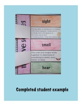 The 5 Senses Science Interactive Vocabulary Foldable
