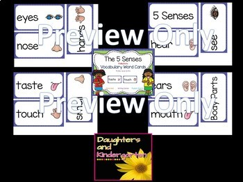 Five Senses Vocabulary Word Wall Cards