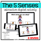 The 5 Senses interactive digital activity