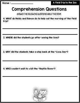 The 5 W's Worksheets
