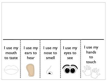 The 5 senses packet