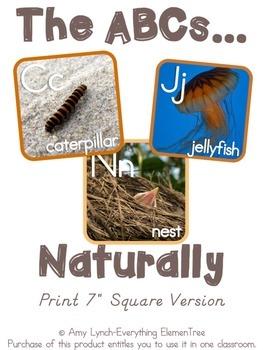 Nature Alphabet Line {Print, Manuscript, and Cursive}