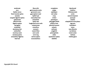 The Acoelomate Animals Vocabulary Word Search for Zoology