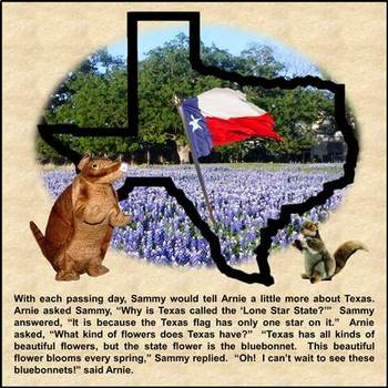 The Adventures of Arnie Armadillo in the State of Texas