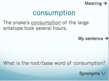 The All American Slurp vocabulary - Holt McDougal Literature Grade 6 (PPT)