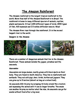 The Amazon Rain-forest Reading and Comprehension