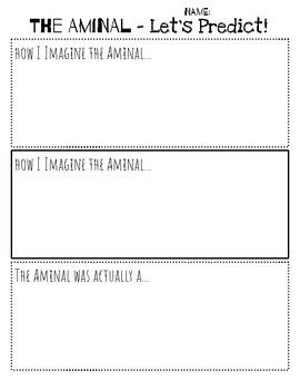 The Aminal