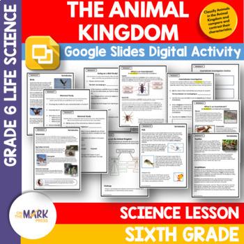 The Animal Kingdom Lesson Plan Grade 6