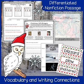 The Animal's Santa by Jan Brett Interactive Read Aloud Lesson Plan & Extensions