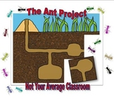 The Ant Project: Research Poster Project Insect Unit - Make Your Own Ant Hill