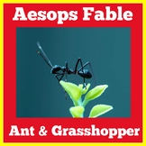 Ant And The Grasshopper Activities