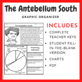 The Antebellum South: Graphic Organizer