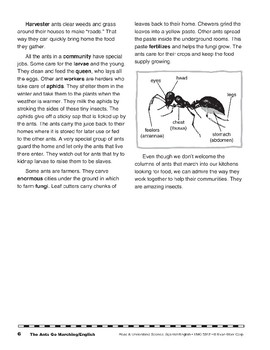 The Ants Go Marching/Las hormigas van marchando