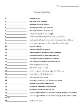 The Aquatic Mandibulates Vocabulary Quiz or Worksheet for Zoology