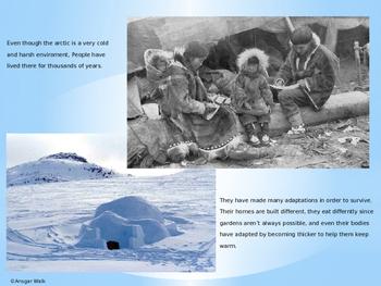 The Arctic Circle