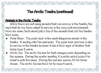 The Arctic Tundra