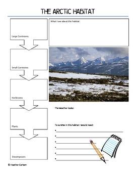 The Arctic (Tundra) Habitat
