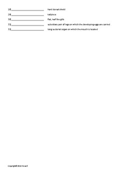 The Arthropods Vocabulary Quiz or Worksheet for Zoology