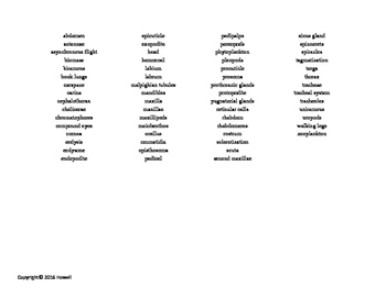 The Arthropods Vocabulary Word Search for Invertebrate Biology