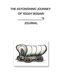 The Astonishing Journey of Teddy Bodain